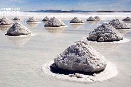 La sal marina